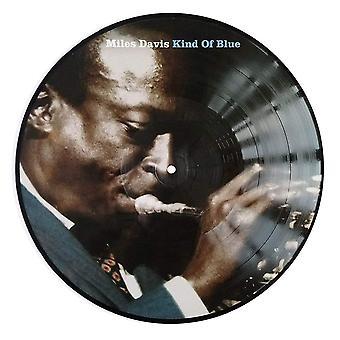 Miles Davis - Typ av blå vinyl (bildskiva)