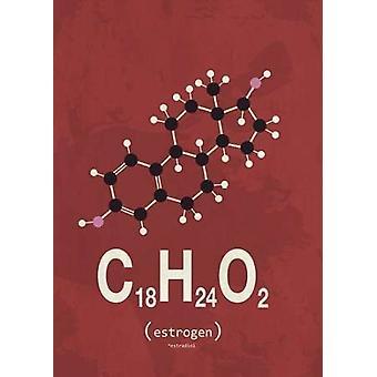 Stampa del manifesto di Estrogene molecola di TypeLike