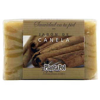 PlantaPol Cinnamon Natural Soap (Hygiene and health , Shower and bath gel , Hand soap)