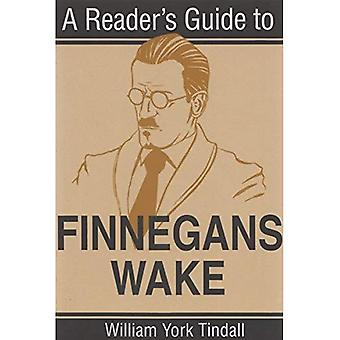 Ein Leser-Guide to Finnegans Wake (Irish Studies)