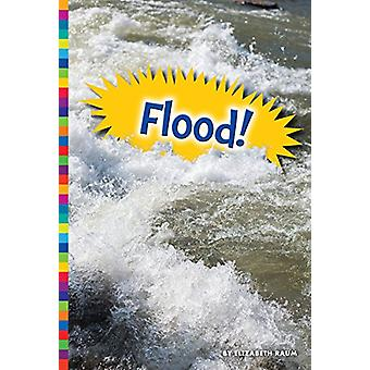 Flood! by Elizabeth Raum - 9781681520834 Book