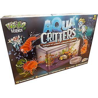 Grafix Aqua Critters Aquarium Prehistoric Swimming Creatures Science Experiment