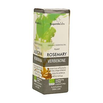Rosemary Verbenone Essential Oil 5 ml of essential oil