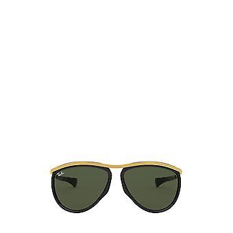 Ray-Ban RB2219 black unisex sunglasses