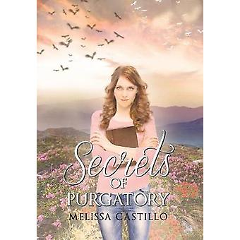 Secrets of Purgatory by Melissa Castillo - 9781684096817 Book
