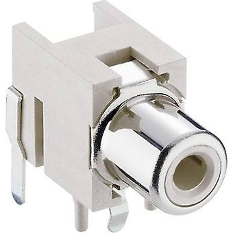 Lumberg 1553 02 weiss tulpconnector Socket, horizontale mount White 1 PC('s)