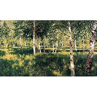 Birch Plantation, Isaac Levitan, 60x35cm