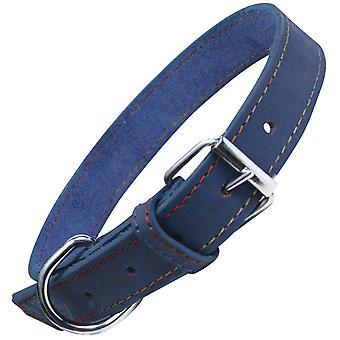 格洛里亚·科勒绿洲(狗,领口和线束,领口)