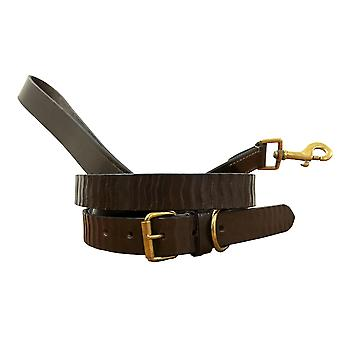 Bradley crompton genuine leather matching pair dog collar and lead set bcdc3brown