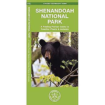 Shenandoah National Park: An Introduction to Familiar Plants & Animals (Pocket Naturalist Guides)