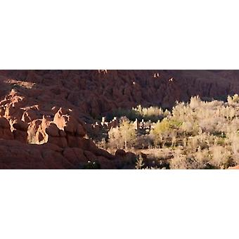 Rock formations in the Dades Valley Dades Gorges Ouarzazate Morocco Poster Print