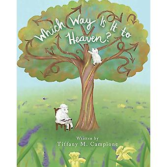 Which Way Is It to Heaven? by Tiffany M Campione - 9781643005003 Book