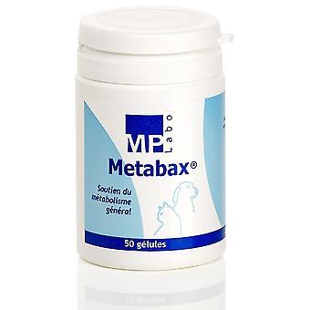 MP Labo Metabax (Hunder , Kosttilskudd)