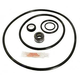 APC APCK1033 o-Ring & Dichtungssatz für Max-E-Glas II & Dura-Glas II Pumpe