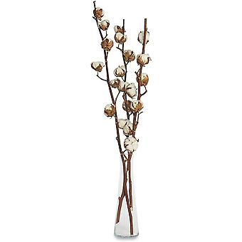 3 Real Cotton Branches - 50 Cm - 7 To 9 Flowers Per Cotton Branch - Real Plant, Dried, Very Durable