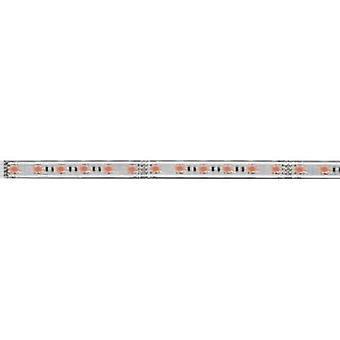 Paulmann MaxLED 1000 70657 LED strip extension + plug 24 V 100 cm