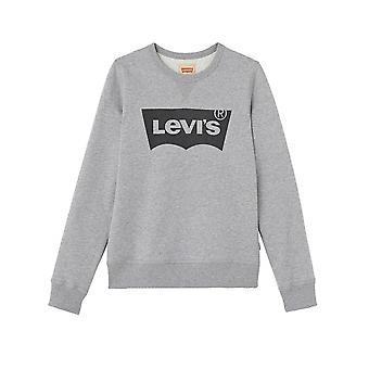 Levi ' s® kinderen grijs Batwing Sweatshirt