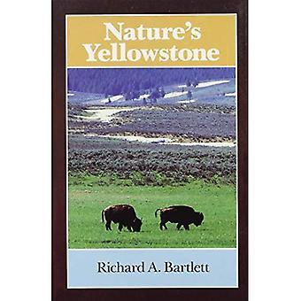 Natuur & s Yellowstone