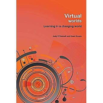 Virtual Worlds: Learning in a Changing World