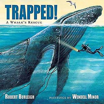 Trapped! - A Whale's Rescue by Robert Burleigh - Wendell Minor - 97815