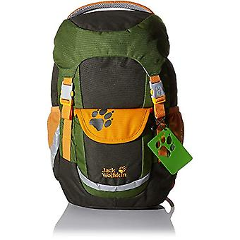 Jack Wolfskin Kids Explorer 16-mochila infantil-verde velho-um tamanho
