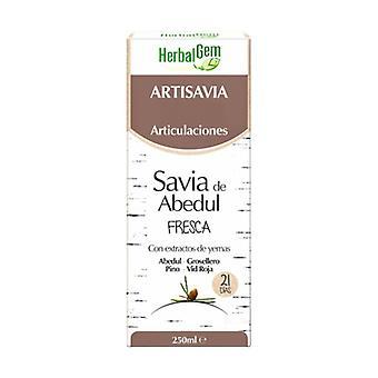 Artisavia Bio Leder 250 ml