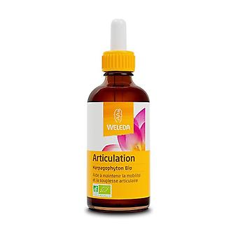 Organic Plant Extracts - Harpagophyton 60 ml