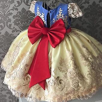Girls Tulle Lace Dress, Elegant Princess Party Dress