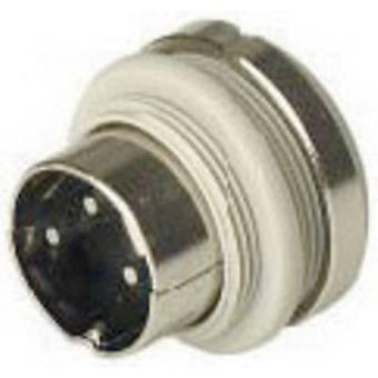 Hirschmann MASEI 6100 DIN connector Plug, vertical mount Number of pins: 6 Grey 1 pc(s)