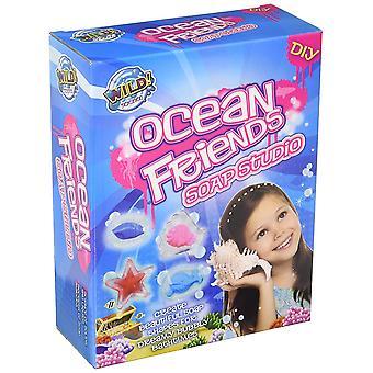 Amigos de océano Tedco jabón estudio ingenio, creatividad, habilidades analíticas