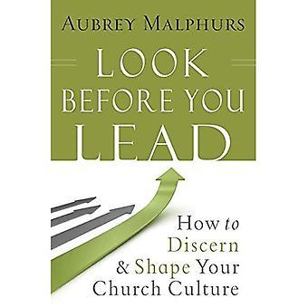 Titta innan du leda: Hur att urskilja och forma din kyrka kultur