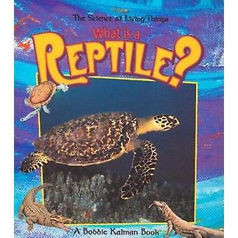 What is a Reptile by Bobbie Kalman - 9780865058934 Book