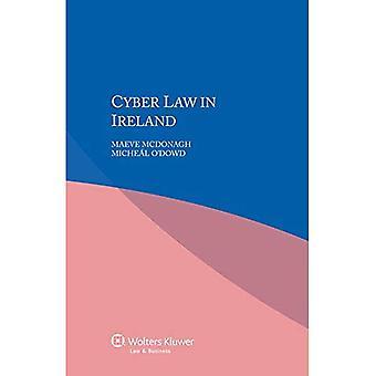 Cyber Law in Ireland
