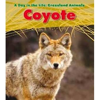 Coyote by Louise Spilsbury - 9781406218923 Book