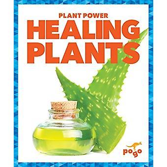 Healing Plants by Karen Latchana Kenney