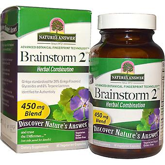 Nature's Answer, Brainstorm 2, Herbal Combination, 450 mg, 90 Vegetarian Capsule