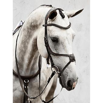 PS of Sweden Ps Of Sweden Athens Bridle - Brown