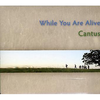 Cantus - terwijl u bent Alive [CD] USA importeren