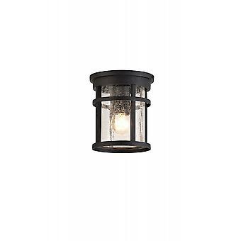 Hazel Ceiling, 1 X E27, Black/clear Crackled Glass, Ip54, 2yrs Warranty