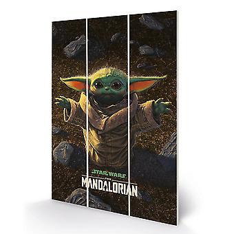 Star Wars: The Mandalorian Wood Print