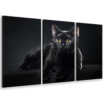 Tableau triptyque animaux petit chat noir aux yeux jaunes - 90x60 cm
