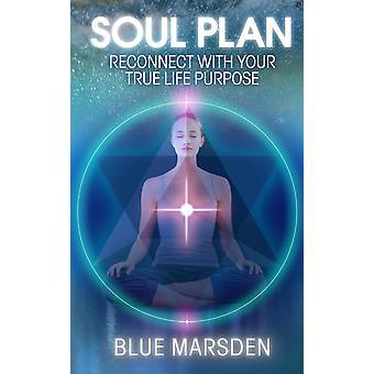 Soul plan-Genopret forbindelse med dit sande liv formål 9781781800768