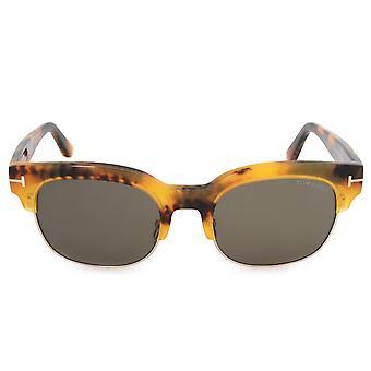 Tom Ford Harry-02 Wayfarer Sunglasses FT0597 55N 53