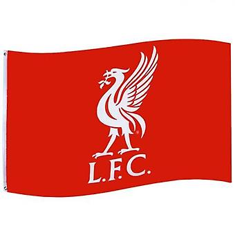Флаг Ливерпуле CC