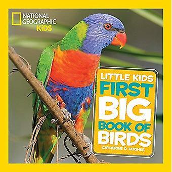 Grand livre des oiseaux (chevreaux géographique National premiers grands livres)