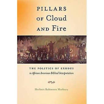 Säulen der Wolke und Feuer die Politik des Exodus in afroamerikanischen Bibelauslegung von Marbury & Herbert Robinson