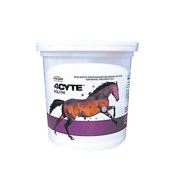 4CYTE Equine 700g