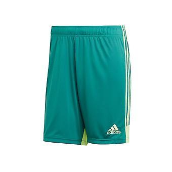 Adidas Tastigo 19 DP3251 training summer men trousers