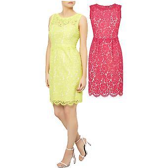 Darling Women's Lois Lace Pencil Dress