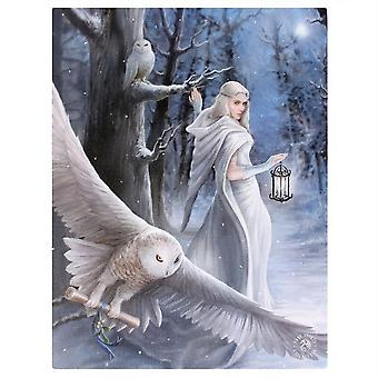Anne Stokes Midnight Messenger Canvas
